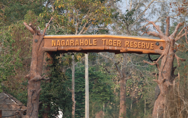 Complete Guide on Nagarhole Safari