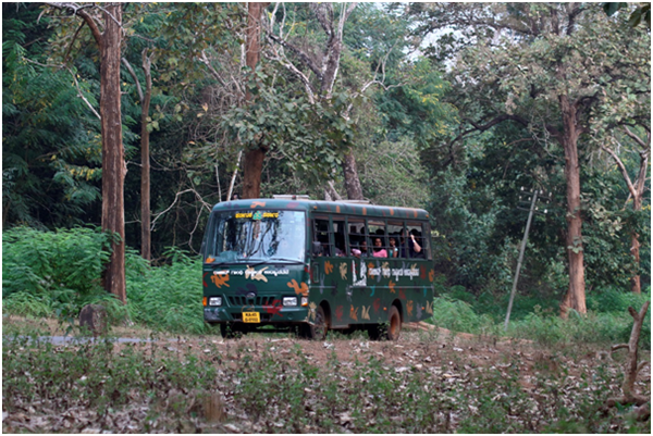 Nagarhole Safari Costing