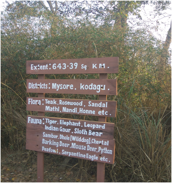 safari while in the Nagarhole wildlife safari zone